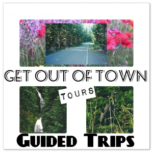 Get Out of Town Tours Captioon Pic Final